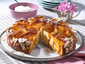 Aprikosen-Rosettenkuchen Rezept
