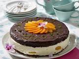 Aprikosen-Schokoladentorte Rezept