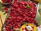 Beerenkuchen vom Blech Rezept