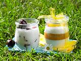 Fruchtige Joghurtcreme Rezept