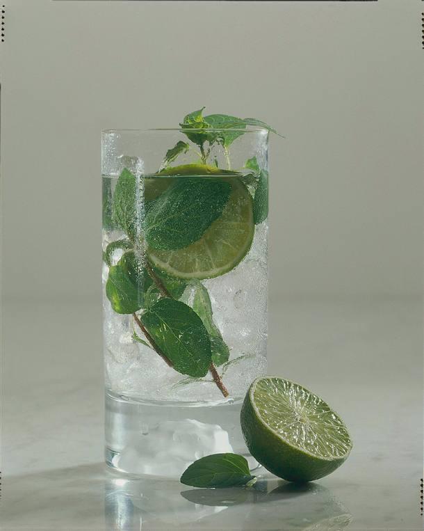 Gin-Tonic mit Minze Rezept