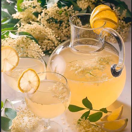 Holunderblütensaft Rezept