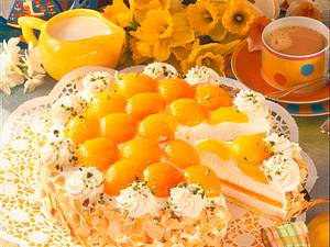 Joghurt-Aprikosentorte Rezept