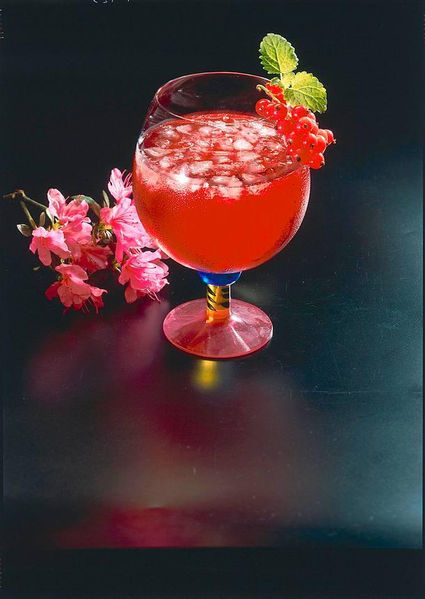 Johannisbeer-Drink Rezept