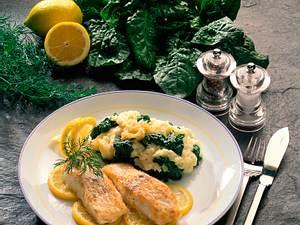 Lengfischfilet mit Spinat-Kartoffelpüree Rezept