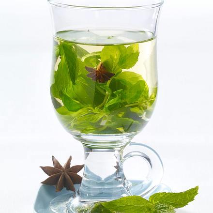 Minz-Anis-Tee (Schlank-Tee) Rezept