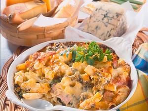 Nudelauflauf mit Vier-Käsesoße Rezept