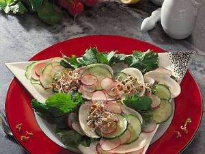 Rauke-Salat Rezept