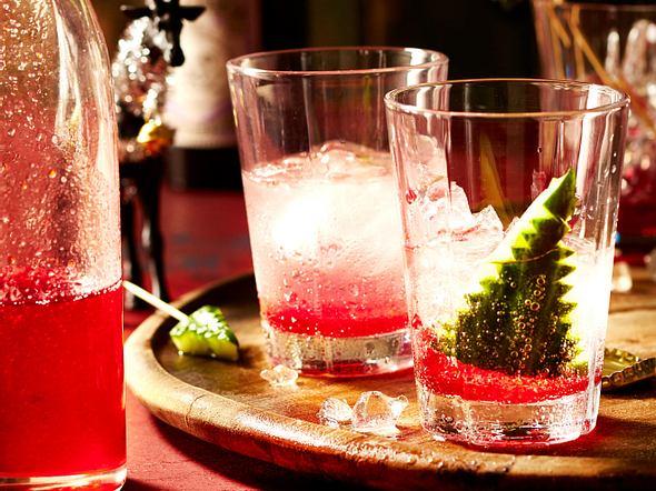 Sausebrause mit Cranberry und Gin Rezept