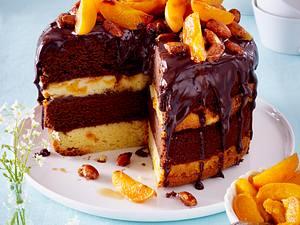 Schoko-Aprikosenkuchen mit karamellisierten Salzmandeln Rezept