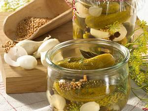 Spreewälder Gewürzgurken Rezept