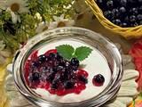 Vanille-Heidelbeer-Quark Rezept
