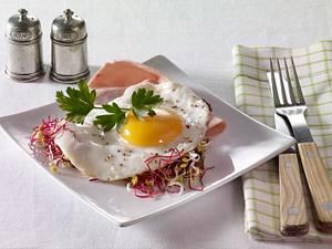 Vollkornbrot mit Kochschinken, Spiegelei und Sprossen Rezept