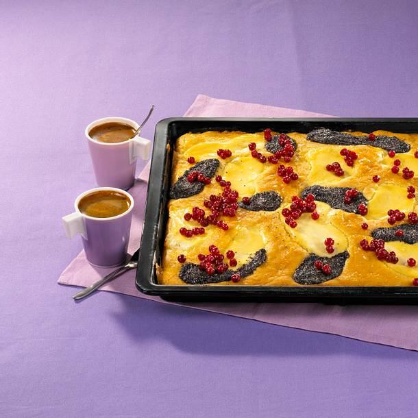 Mohn Quark Kuchen Rezept Lecker