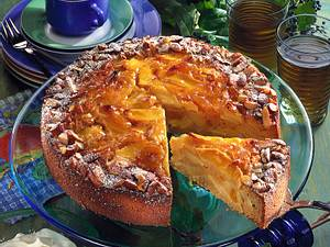 Apfel-Aprikosen-Mandelkuchen Rezept