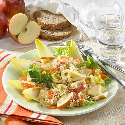 Apfel-Chicorée-Salat mit Sprossen Rezept