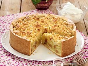 Apfel-Streusel-Kuchen mit Guss Rezept