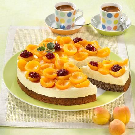 Aprikosen-Quark-Torte Rezept