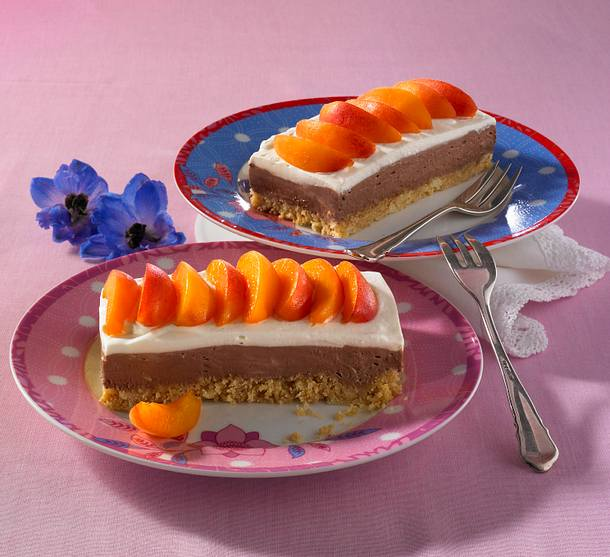 Aprikosen-Schoko-Schnitten Rezept