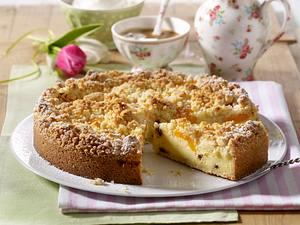 Aprikosen-Streuselkuchen mit Puddingcreme, Schokotröpfchen und Kokos Rezept