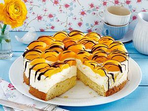 Aprikosen-Torte Rezept