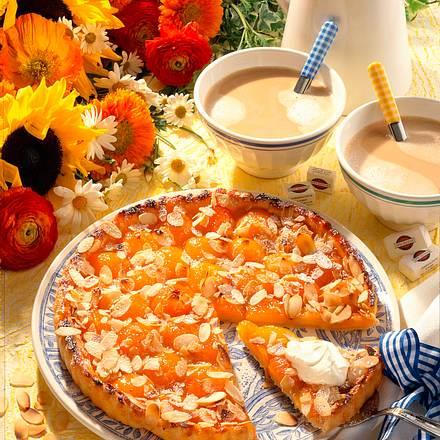 Aprikosen-Torte mit Mandeln Rezept
