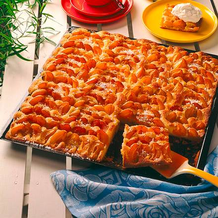 Aprikosenblechkuchen mit Marzipanrührteig Rezept