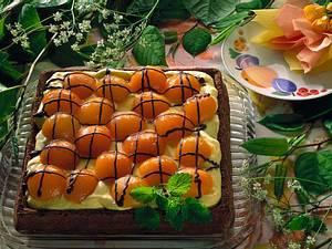 Aprikosenkuchen Rezept