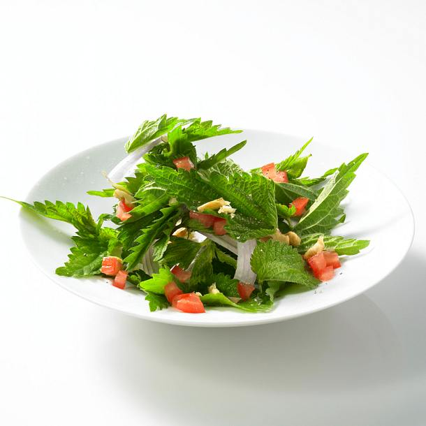 Brennnessel-Tomatensalat Rezept