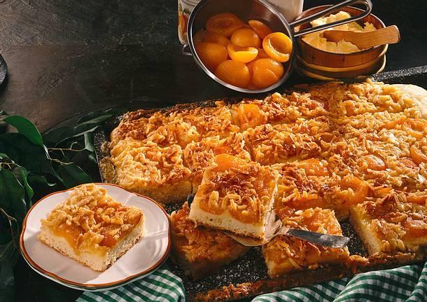 Butterkuchen mit Aprikosen Rezept