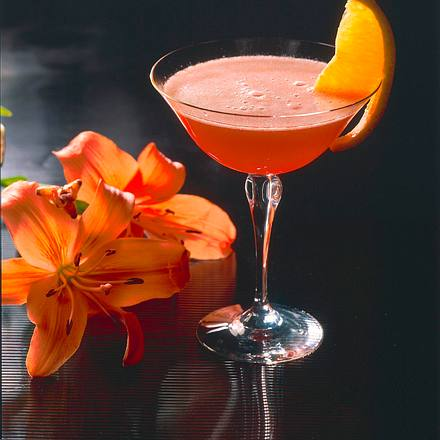Campari-Sekt-Drink Rezept