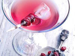 Cranberry-Wermut-Cocktail Rezept
