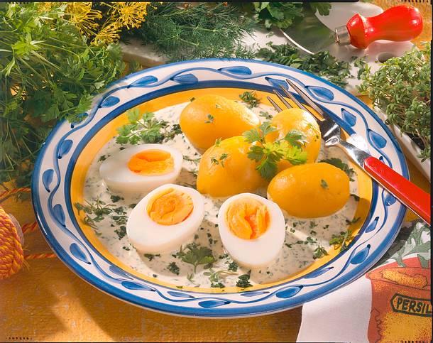 Eier auf Kräuterjoghurt Rezept