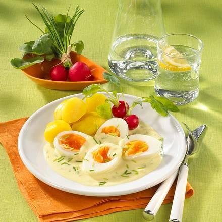 Eier in leichter Senfsoße Rezept