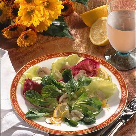 Feiner Blattsalat mit Zitronen-Vinaigrette Rezept