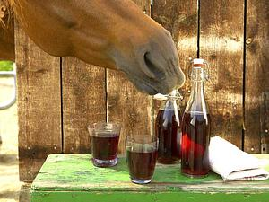 Fliederbeer-Apfel-Brause Rezept