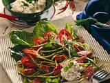 Frischer Salat mit Salami und Frischkäse Rezept