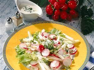 Frühlingssalat Rezept