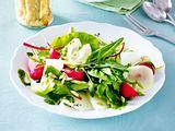 Frühlingssalat mit Käseküchlein und Kohlrabipesto Rezept