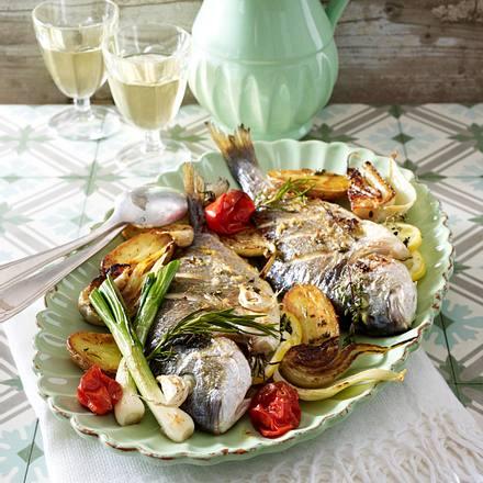 Gebackene Dorade auf Gemüsebett Rezept