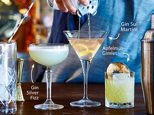 Gin Silver Fizz Rezept