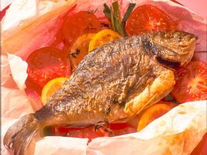 Goldbrasse (Dorade) mit Tomaten in Pergament Rezept