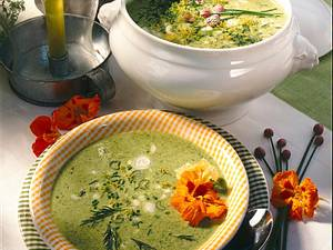 Gurken-Süppchen mit Gartenkräutern Rezept
