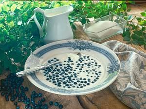 Heidelbeeren mit Milch Rezept