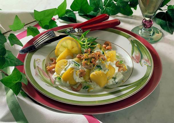 Junge Kartoffeln mit Gurken-Estragon-Quark Rezept