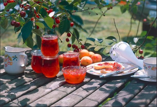 Kirsch-Aprikosen-Konfitüre Rezept