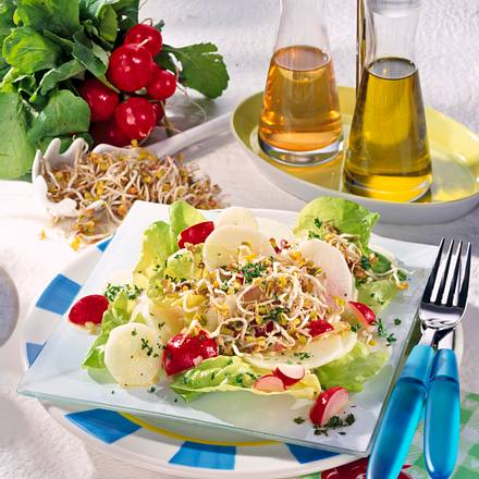 Knackiger Radieschen-Rettich-Salat mit Senf-Vinaigrette Rezept