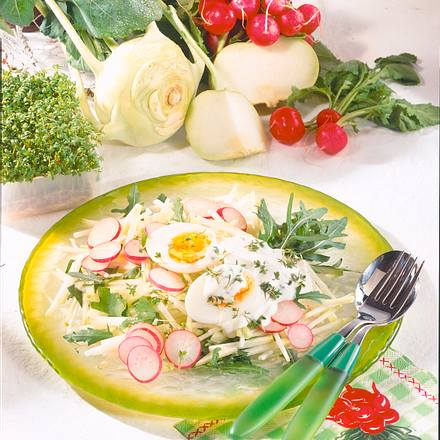Kohlrabi-Salat mit Kresse-Schmand Rezept