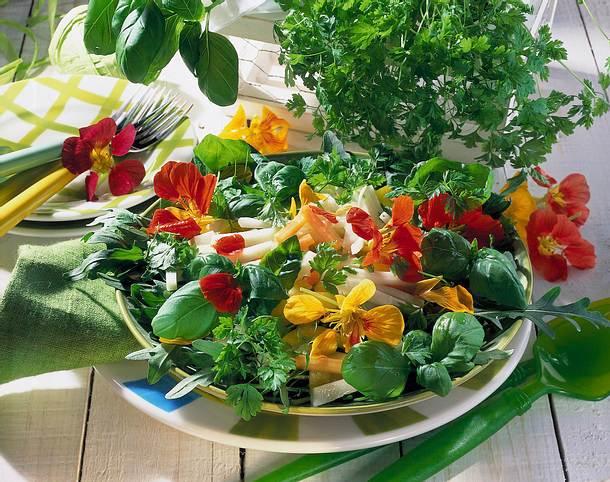 Kräutersalat mit Kohlrabi und Möhren Rezept
