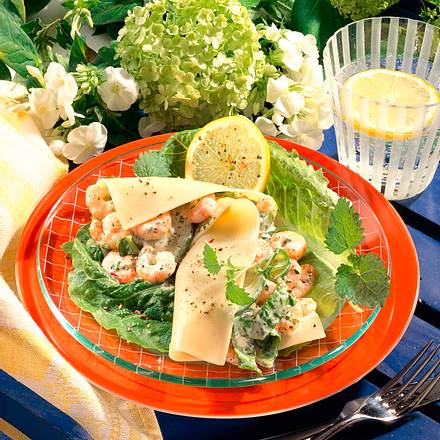 Lasagne mit Salatfüllung Rezept